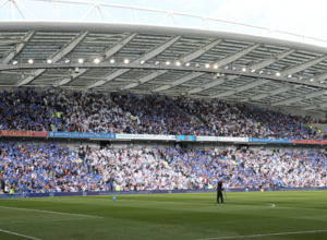 Estadio del Brighton & Hove Albion